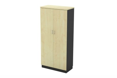 Swinging Door Medium Cabinet