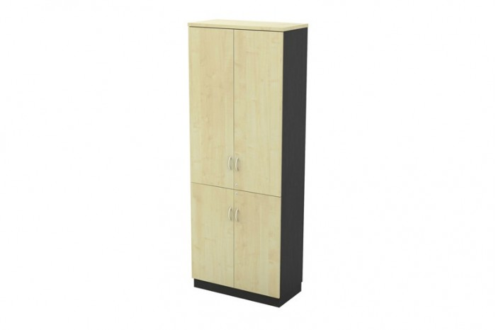 Swinging Door High Cabinet