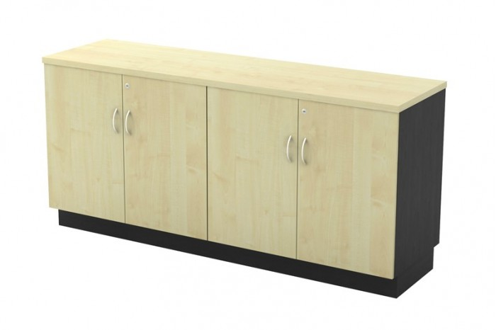 Dual Swinging Door Low Cabinet