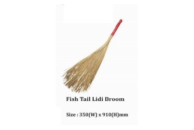 Fish Tail Lidi Broom