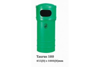 Taurus 100